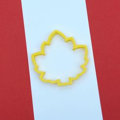WhatsApp-Image-2021-10-13-at-3.49.29-PM-1.jpeg Download STL file Maple Leaf Cookie Cutters • Model to 3D print, Bren_SA