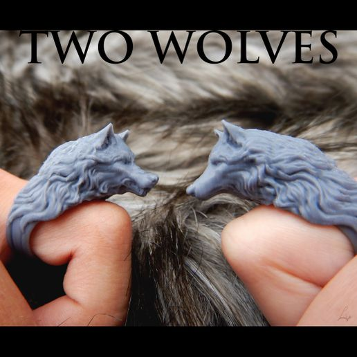 voorkant cults final.jpg Download free STL file Two Wolves - Set of Rings • 3D printing design, LabradoriteWolf