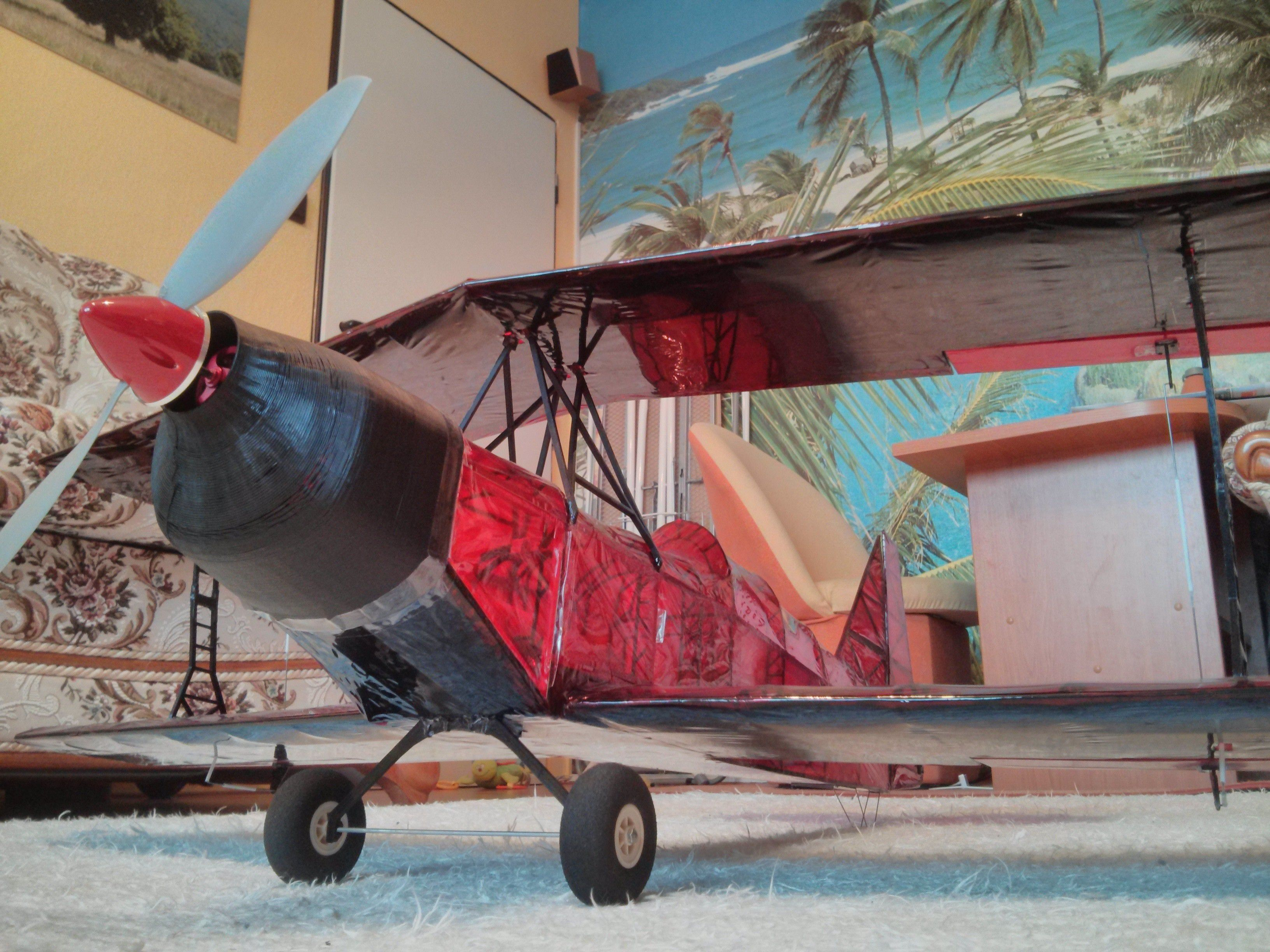 IMG_20140225_152241.jpg Download free STL file Ultimate Biplane 10-300S • Object to 3D print, osoba