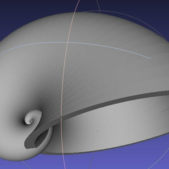 shell01_whole.png Download free STL file Shell 01 • 3D printing model, zeycus