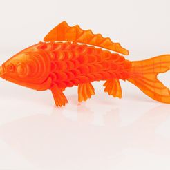 IMG_8442_display_large.jpg Download free STL file 'On Such a Full Sea' Koi Fish • 3D printable design, RaymondDeLuca