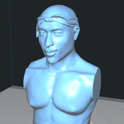 pac5.png Download free STL file 2 PAC BUST THUG LIFE • 3D printer object, Madhazred