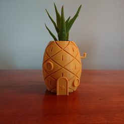DSC_0113.jpg Download free STL file Spongebob's House Plant Pot • 3D printer template, reno77