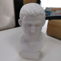 IMG_20210515_154752.jpg Download free STL file Agrippa(GENERATED BY REVOPOINT POP) • 3D printable object, Revopoint3D