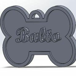 Captura.JPG Descargar archivo STL  dog tag • Diseño imprimible en 3D, luis__cx_