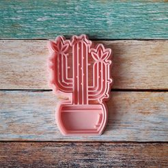 CSC0-009.jpg Download STL file Cactus cutter and stamp - Cactus 09 cutter and marker • 3D printer template, quinteroslg