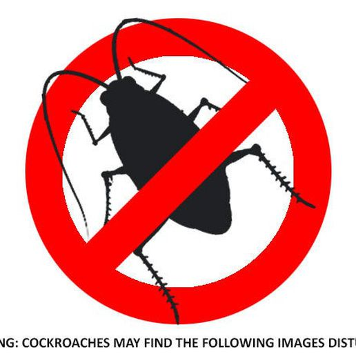 05d4d8aa7231c2f238a08f0c726de0f9_display_large.jpg Download free STL file Roach Trap...Reusable trap to catch and kill cockroaches • Template to 3D print, Muzz64