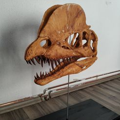 dilophosaurus-skull-part-2-2-3d-printing-238754.jpg Download OBJ file Dilophosaurus Skull • Design to 3D print, arric