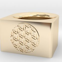 625x465_2966205_7995319_1418950962.jpg Download STL file Sacred Geometry - Flower of Life - Ring • Object to 3D print, tjkbrown