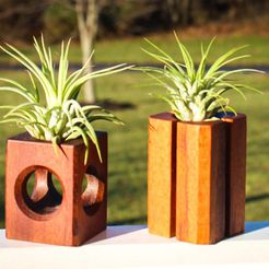 IMG_0031.jpg Download STL file Air Plant Holders • 3D print model, mtairymd