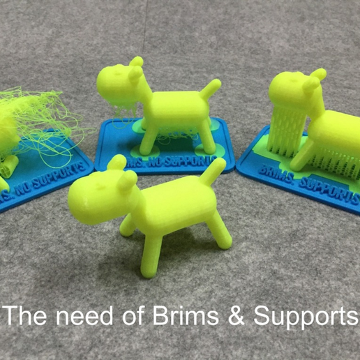 Capture_d_e_cran_2016-01-25_a__14.53.53.png Download free STL file Teaching tool of 3D printer with brims & supports • 3D printing template, Eunny