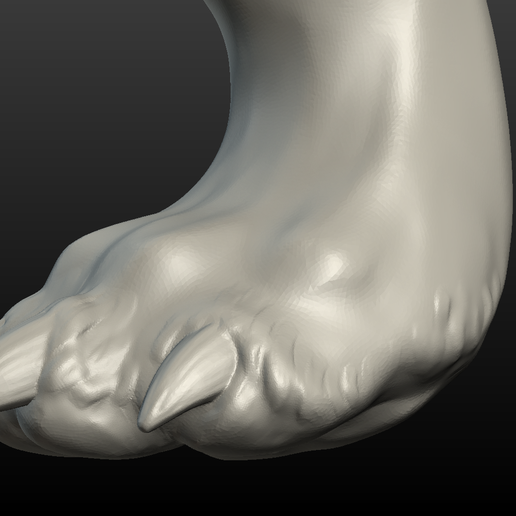 Wolf_Hind_Paw-011.png Download 3DS file Wolf Hind Leg • Object to 3D print, Skazok