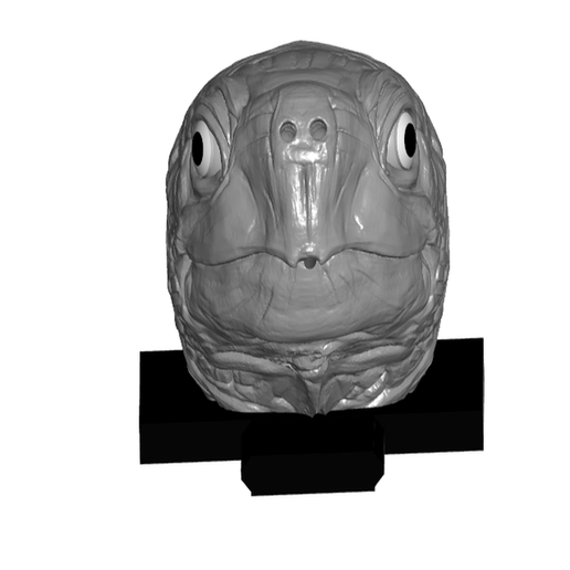TIfront.png Download free STL file Turtle Head Incense Burner (Interchangeable) • 3D print template, ToaKamate