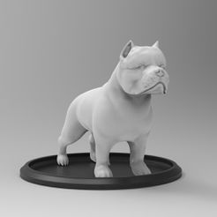 untitled.102.jpg Download OBJ file American Bully • Object to 3D print, CrazyModel