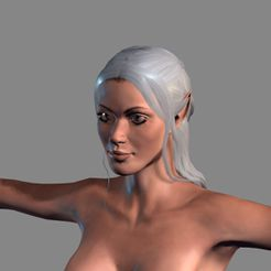 1.jpg Download STL file Animated Elf woman-Rigged 3d game character Low-poly • Model to 3D print, igorkol1994