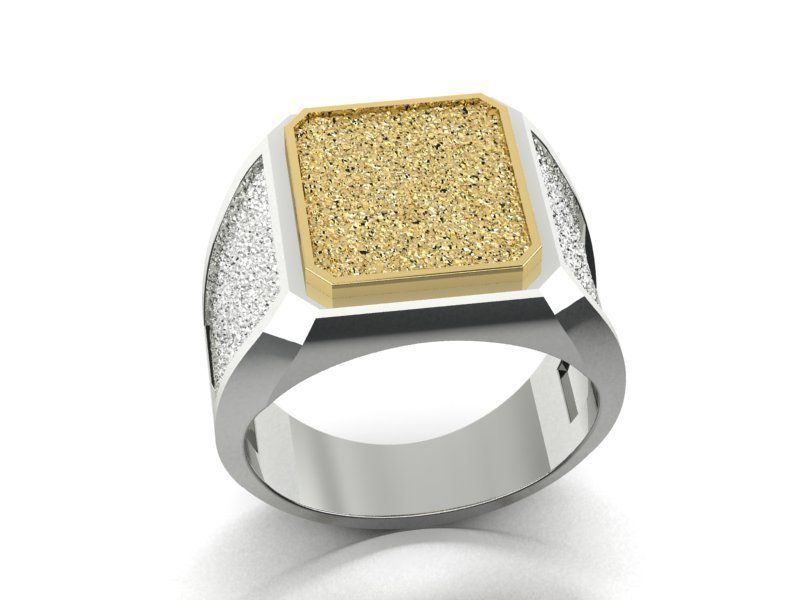 113.jpg Download 3DS file signet ring with heraldic • 3D print template, sergotall1977