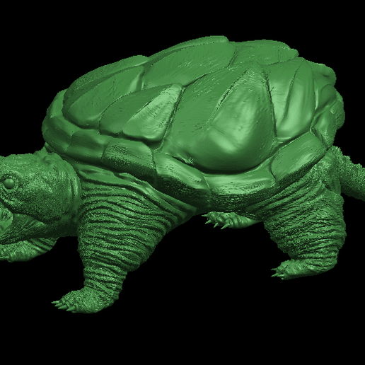 03.png Download free STL file Giant tortoise • 3D print model, GeorgesNikkei