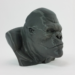 Capture_d__cran_2015-07-07___14.11.17.png Download free STL file King Kong • Model to 3D print, questpact