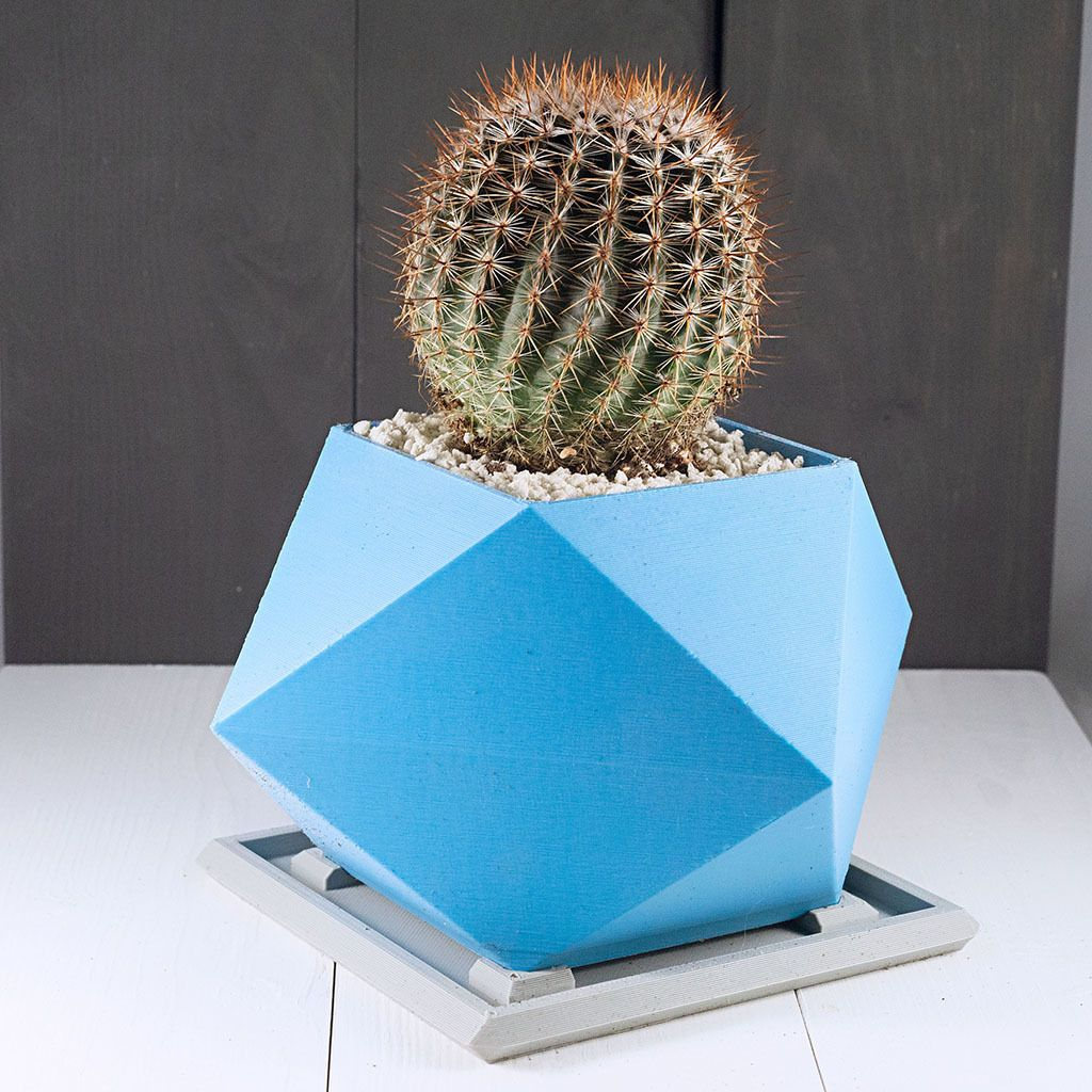 Spiky2.jpg Download free STL file Spikey Planter • 3D print object, TangoFiveCreations