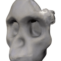 Capture d'écran 2018-05-14 à 14.34.18.png Download free STL file Australopithicus Africanus (Taung Child Skull Fragment) • Object to 3D print, sjpiper145