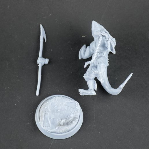 Patreon-2021-3-5.jpg Download STL file Wereshark - Sharkfolk with spear and anchor 32/75 pre-supported • 3D printable template, My3DprintFORGE