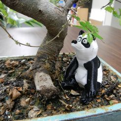 DSCN0540.JPG Download free STL file Panda • Model to 3D print, yourwildworld
