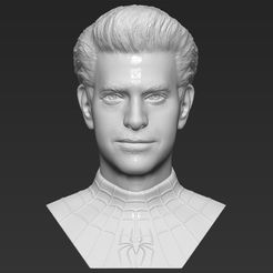 1.jpg Download STL file Spider-Man Andrew Garfield bust 3D printing ready stl obj formats • 3D printable object, PrintedReality