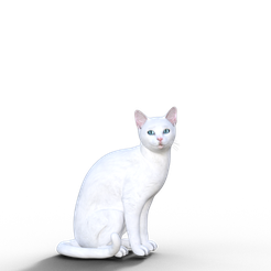Chat.png Download free OBJ file The cat • 3D printing model, screw