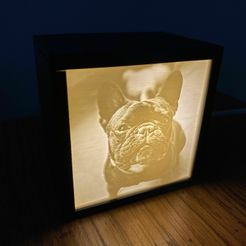 IMG_8650.jpg Download STL file Simple Lithophane Box (Holds 1 Panel) • 3D printer template, ThinAirCraftworks