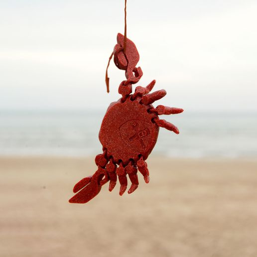 c_gl7_retocada.jpg Descargar archivo STL Articulated Crab • Plan imprimible en 3D, mcgybeer