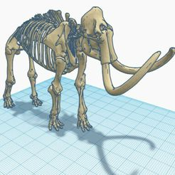 mamouth 2.jpg Download free STL file Skeleton Mammoth • 3D printing template, Kurome