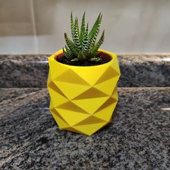 IMG_20210219_223224.jpg Download STL file Low Poly Pineapple Mini Cactus Pot • 3D printing design, AlexEarp