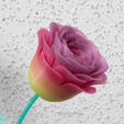 Capture_d_e_cran_2016-08-12_a__17.41.55.png Download file Roses of Unicofil • Template to 3D print, AH727