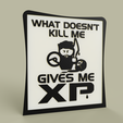 Game_-_What_Doesn_t_kill_me_gives_me_XP_2019-Jun-09_09-19-49AM-000_CustomizedView16124478031.png Télécharger fichier STL gratuit Jeu - What Doesn t kill me gives me XP • Plan pour impression 3D, yb__magiic