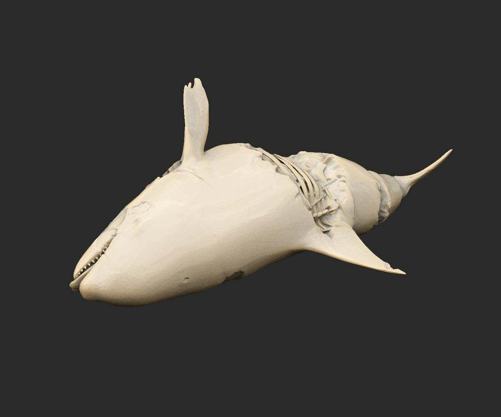 OrcaDead.jpg Download free STL file Orca Dead Cthulhu • Object to 3D print, CharlieVet