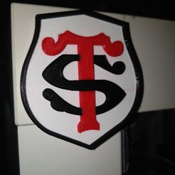 IMG_20200302_114839[1].jpg Download free STL file Squirrels Stade Toulousain bicolore ( rugby ) • 3D print object, vejuxdaniel