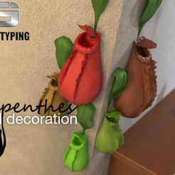 Nepenthes.jpg Download free STL file wall decoration-nepenthes • 3D printer template, gaojiemodelsales