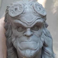 tyuyu.jpg Download OBJ file Hellboy • Object to 3D print, Joneto