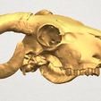 TDA0580 Skull of Goat 02 A06.png Download free STL file Skull of Goat 02 • 3D print design, GeorgesNikkei