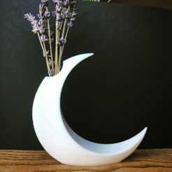 moon 1.jpg Download free STL file Minimalist Moon Vase • Object to 3D print, skelei