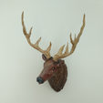 Download free STL file Stag Trophy • 3D printing object, DFB93