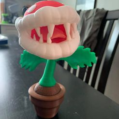 69386141_10157386591561585_1020901124825153536_n.jpg Download STL file Piranha Plant from Super Mario • 3D printable template, DFB93