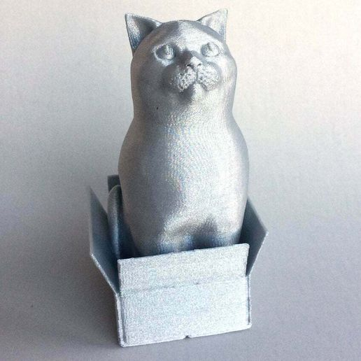 rapuzel_silver_4.jpg Download free STL file Schrodinky: British Shorthair Cat Sitting In A Box(single extrusion version) • 3D print template, loubie